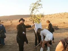 PICT5798 (jonklinger) Tags: israel king martin visit negev hebrew 3rd luther ramat klinger maayan ml3 20060914 lafdej haneurim