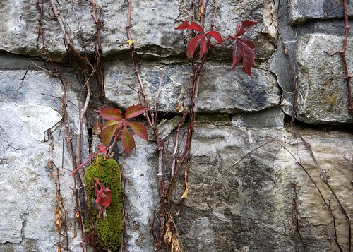 Fall on a Wall