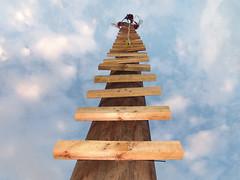 Escalera al cielo / Stairway to heaven (Davichi) Tags: wood sky people tower scale topf25 strange topv111 clouds stairs danger mexico grande big madera topv555 topv333 heaven torre gente topv1111 topv999 topv444 culture vertigo treppe escalera cielo jp nubes paloalto topv777 perspectiva tradition veracruz alto topv666 largo escalier cultura tablas altura subir escalones arriba contrapicado topv888 tradicion starway escalando peligroso subiendo topv1555 papantla treden 台阶 escalón cruzadas flickrclickr abigfave ltytrx5 impressedbeauty aplusphoto ltytr1 grandisima ccctd σκαλοπάτια escalerota