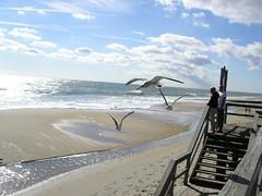 Bethany 06 062 (samarathery) Tags: beach bethanybeach