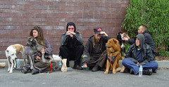 Homeless group (Franco Folini) Tags: poverty sanfrancisco california ca street people woman usa dog dogs girl cane america photography us donna strada foto sony homeless group poor streetlife guys sidewalk haight haightashbury haightstreet fotografia sdf streetpeople ragazza clochard gruppo cani povert pobreza homelessness barbone pauvret marciapiede sanspapiers haightst dscf707 senzatetto poors senzacasa poveri francofolini senzafissadimora sansdomicilefixe folini