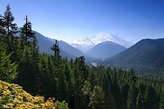 Mt. Rainier Valley - by jeffsmallwood