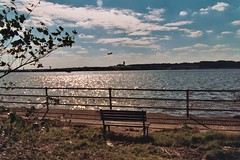 Hains Point (jvonr) Tags: 2003 bench 200310 hainspoint benchmarkguide