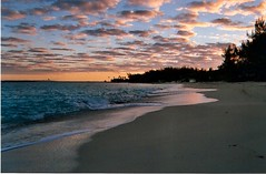 Bahamas Paradise Island Beach (omphale44) Tags: ocean travel vacation beach water ilovenature carribean bahamas paradiseisland p1f1