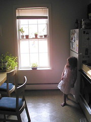 early morning girl (Sarabbit) Tags: light window kitchen girl children dress chairs space cc creativecommons sanguinaria teamecoetsy