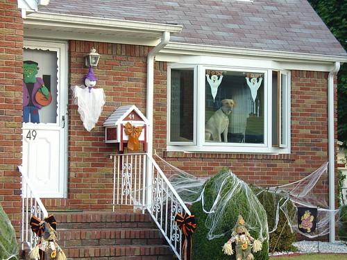 Halloween buddy