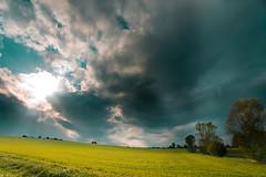 _MG_1847 (ste7130) Tags: sky nature herbst natur 5d canon5d sonne 1740mm badenwrttemberg dramtic 17mm 1740mml dramatik