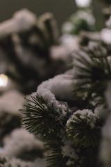 (lisetgarcia76) Tags: snow snowfall winter cold nighttime night wonderland