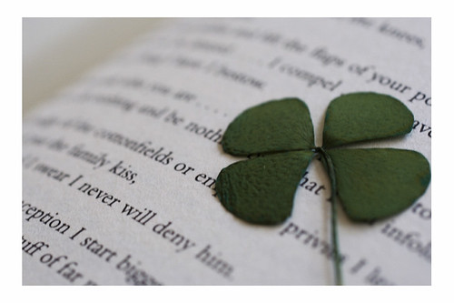Pressed Clover in a book of poems