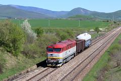 751 199-1 (MarSt44) Tags: slovak republic jovice 751 7511991 1991 199 bardotka berta zssk cargo mn słowacja kolej diesel train railway