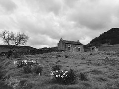 Moorland Derelict (whitehart1882) Tags: travel moors britain england yorkshire sky clouds flowers garden derelict empty home house