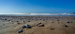 At the Atlantic Coast (KPPG) Tags: marokko morocco africa afrika beach strand atlantic atlantik steine stones 7dwf