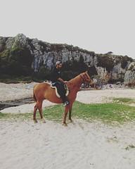 Visita a Laila, potra de cuatro años,que fue domada en Cuadra el Alisal en verano. Hoy estuvimos de paseo para ver la progresion de estos meses!:) #cuadraelalisal #domanatural #angloárabe #caballos #horses #horseslife #horselovers #horsesport