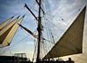 Tall ship, late afternoon, San Diego Harbor (kimbar/Thanks for 3.5 million views!) Tags: tallship ship sails sandiego california harbor