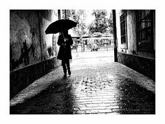Les éléments (benoitalluin) Tags: black walk walking rue séville parapluie pluie rain