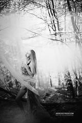 The Poetry of this old Garden (check4newton) Tags: garten garden light infrared poetry beauty flashphotography ef 14 50mm open aperture wald baum personen porträt holz gras