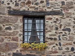 La ventana. Santa Pau. (svet.llum) Tags: ventana catalunya cataluña santapau pueblo arquitectura texturas flor flores edificio edifici