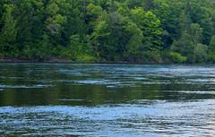 River Reflections (RockN) Tags: stjohnriver reflection august2016 grandfalls newbrunswick canada