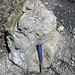 Sandstone (Middle Pennsylvanian; Frazeysburg Pit, Muskingum County, Ohio, USA) 7