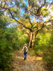 Just Annie and her Welcoming Tree on her Birthday Bush Walk (caralan393) Tags: annie oil walk wonder tree art phone welcome wave