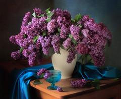 Still life with fragrant lilac (Tatyana Skorokhod) Tags: lilac bouquet stilllife vase spring flickrdiamond