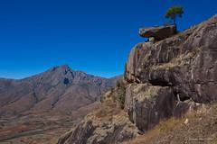 Lonely tree (NettyA) Tags: 2017 africa andonaka andringitra lecameleon madagascar thechameleon tsaravalley tsaranorovalley granite hike hiking mountains rock tree