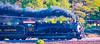 Homeward Bound (Woodypug) Tags: grandcanyonrailway gcrr steam locomotive 4960 excbq williams atsf arizona