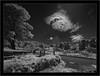 Sony A7R IR with Voigtlander Heliar-Hyper Wide 10mm f/5.6 Aspherical (Dierk Topp) Tags: bw bäume ir voigtlanderheliarhyperwide10mmf56aspherical canaryislands clouds infrared infrarot islascanarias lapalma monochrom sw sony sun trees