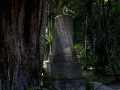 Singapore's Japanese Cemetery Park (Believer) (thecrapone) Tags: singapore graveyard tombstone death japanese cemetery believer dark moody shadow light pentax06 pentaxq7