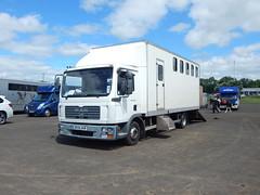BX55 AUK (Jonny1312) Tags: lorry truck horsebox manhorsebox mantgl ballymena midantrimhorseshow horsesintransit