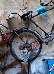 (for.eMike) Tags: bicicletta bicycle bici bike
