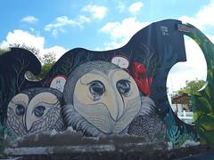 Puerto Ayora (Daniel Putík) Tags: lechuza street art sova owl cemetery wall graffiti mural puerto ayora santa cruz galapágy galapagos galápagos
