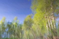 Keravanjoki water reflections upside down (lighter exposure) (talaakso) Tags: finland heijastus hyvinkää keravanjoki nikkor28300 nikond610 terolaakso vedenpinta waterreflection heijastukset landscape landskap naturelandscape reflexion talaakso water watersurface ep