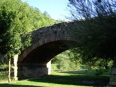 Antiguo puente (Ezcaray, La Rioja, España, 23-6-2007) (Juanje Orío) Tags: ezcaray larioja 2007 provinciadelarioja españa espagne espanha espanya spain puente bridge
