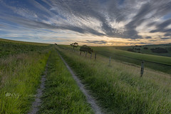 It`s all uphill (Through Bri`s Lens) Tags: sussex steyning sunset track path bridleway trees fence brianspicer canon5dmk3 canon1635f4 lee09softgrad