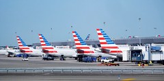 AA tails at JFK (kenjet) Tags: tail tails aa aal american americanairlines jfk nyc ny newyorkjfkairport terminal concourse airport aviation ramp gate gates flugzeug plane jet airline airliner aircraft