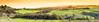 Never-ending   c y p r e s s e s (SLpixeLS) Tags: italy italie tuscany toscane toscana chiusure landscape paysage soil terre tree arbre cypress cyprès sky ciel sunset coucherdesoleil panorama pano