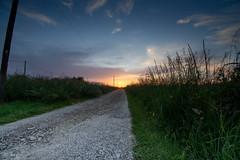 Le chemin (Meculda) Tags: soleil journée sun sunset chemin nature france ciel sky nikon extérieur soirée 2018 printemps herbe verte green color couleur