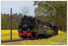 Pollo - 2018-14 (olherfoto) Tags: bahn eisenbahn schmalspurbahn kleinbahn museumsbahn pollo dampf dampflok dampfzug vasut kisvasut rail railway railroad narrowgauge steam train steamtrain