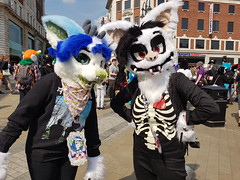 """Leeds furmeet May2018 • <a style=""""font-size:0.8em;"""" href=""""http://www.flickr.com/photos/97271265@N08/40443205390/"""" target=""""_blank"""">View on Flickr</a>"""