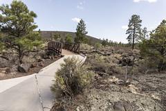 SedonaVacation_May2018-3206 (RobBixbyPhotography) Tags: arizona flagstaff sedona sunsetcrater vacation nationalmonument volcano travel