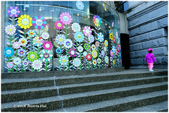 The Flower Generation - Art Gallery XP7845e (Harris Hui (in search of light)) Tags: harrishui fujixpro2 digitalmirrorlesscamera fuji fujifilm vancouver richmond bc canada vancouverdslrshooter mirrorless fujixambassador xpro2 fujixcamera fujixseries fujix fuji1024mmf4 fujizoomlens artgallery flowergeneration child virtualreality candid street streetphotography downtown downtownvancouver newgeneration younggeneration wideangle velvia colour colorfulworld socialcritique
