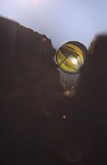 Schnell ins Schlafnest, bevor die Sonne ganz rauskommt. Ein bisschen indirekte Lichtspiele in den Träumen reichen vollkommen nach der ersten Nachtschicht. (Manuela Salzinger) Tags: bodensee lakeconstance frühling spring abend evening sonne sunset see lake