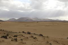 201702130705 - Canaries, Fuerteventura; dunes de Corralejo (Pierrot_B.) Tags: pierrotb canaries fuerteventura lanzarote tenerife lagomera
