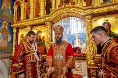 2018.04.29 liturgiya Akademicheskiy khram KDAiS (44)