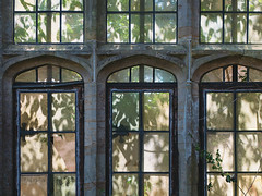 Light and shadows (V Photography and Art) Tags: window led stone shadows light green leaves nature patterns