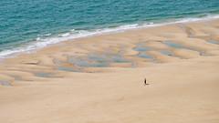 Seul face à la mer... avec son chien... (Katell Ar Gow) Tags: pharecarteret plage cotentin phare