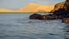 Galapagos-2686 (kasiahalka (Kasia Halka)) Tags: aidamaria beach bird birds boat ecuador galapagos galapagosislands genovesaisland islagenovesa islands southamerica swallowtailedgull water yacht snorkeling outdoor travel catamaran blue heron pacificocean ocean animal animals