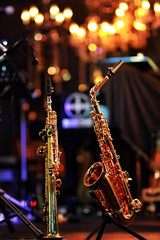 Canon 7D color (Xiaole wy & JV William) Tags: canon eos 7d sigma 85mm f14 hsm color festival photography borneo island jazz miri sarawak south east asia holiday vacation travel music smooth silky bokeh light shadow