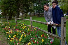 Smiles are  contagious..... (ineedathis, Everyday I get up, it's a great day!) Tags: eleni justin twins family grandchildren siblings sister brother tulipfestival huntington heckscherpark longisland newyork fence tulips flowers spring trees grass gazebo smiles happiness portrait nikond750